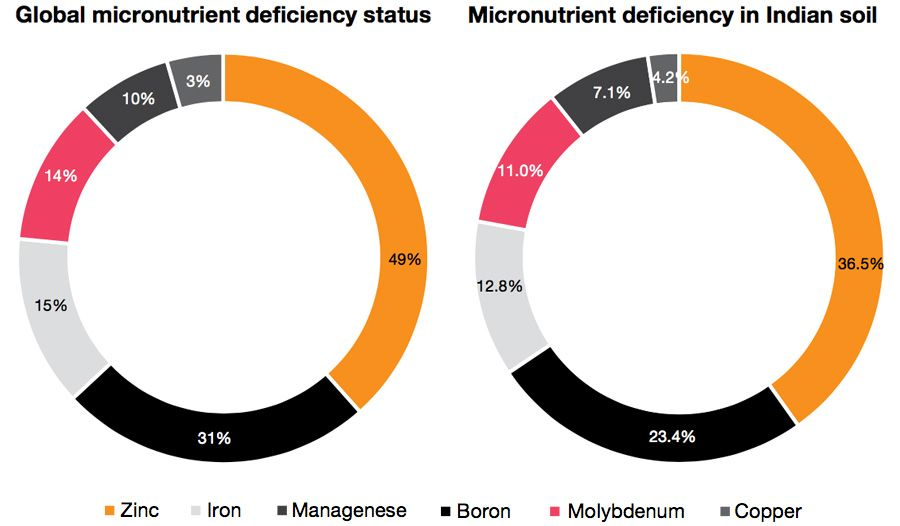 Micronutrient deficiency status