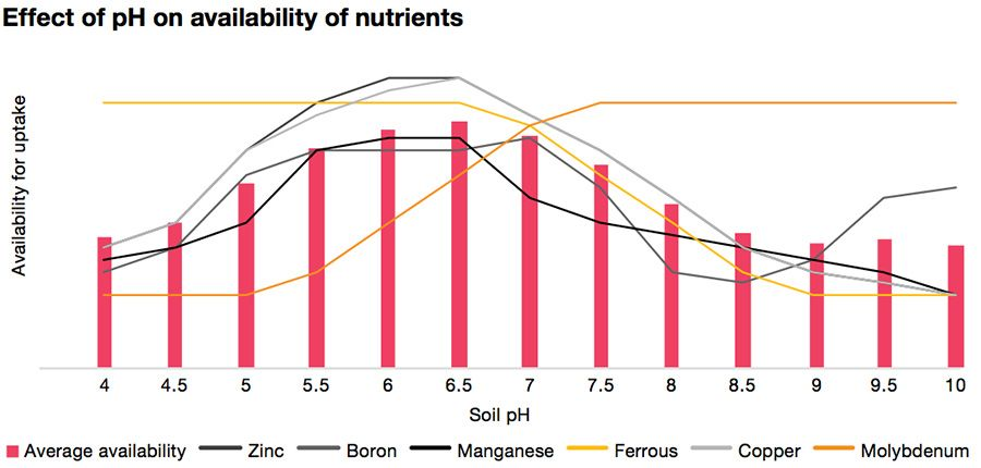 Effect of pH on availability of nutrients