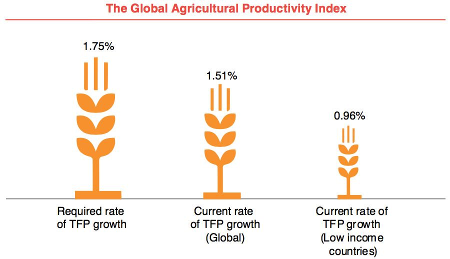 The Global Agricultural Productivitiy Index