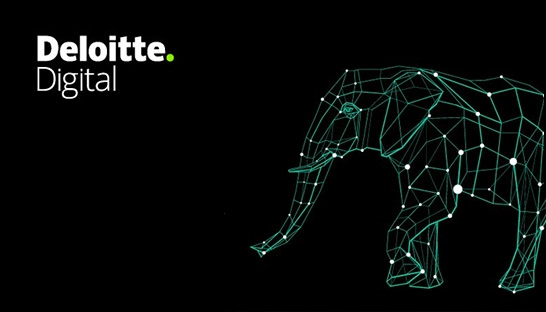 Deloitte Digital formally launches in India, led by Ajit Kumar