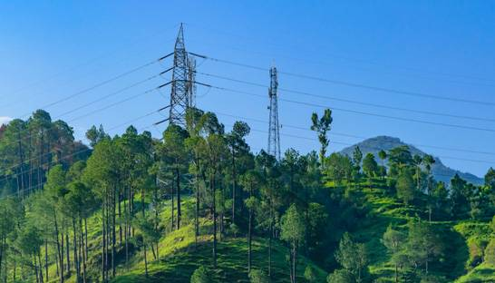 Deloitte working on privitisation of India's power sector