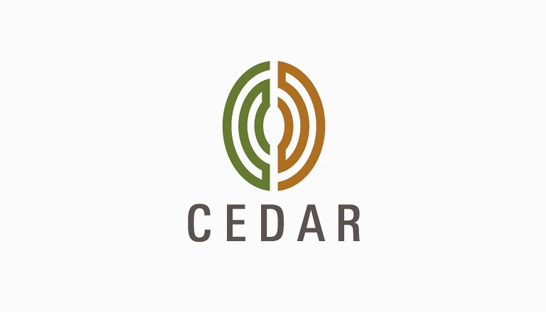 Consulting firm in India: Cedar Management Consulting
